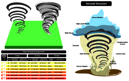Tornado Structure Infographic cross section with parts natural disaster damage scale wind speed grade consequences cloud wall storm motion level dust shroud condensation tunnel surface layer Illustration