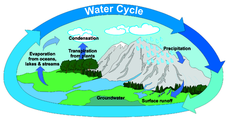 evaporacion: Water Cycle in Nature with all part precipitation surface runoff groundwater evaporation transpiration condensation clouds mountains rivers lake trees forest  lawns arrows circulation