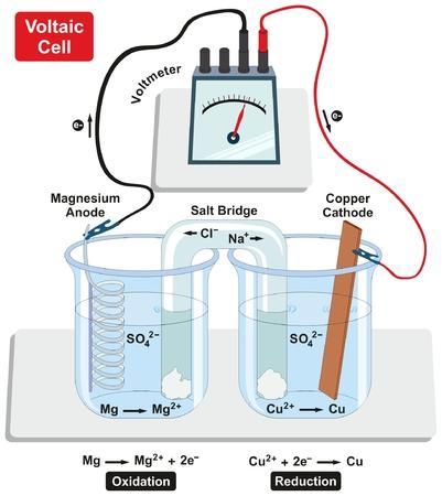 구리 음극 및 마그네슘 양극 소금 다리 전압계가있는 Voltaic Galvanic Cell 및 물리 화학적 과학 교육을위한 산화 및 환원 다이어그램