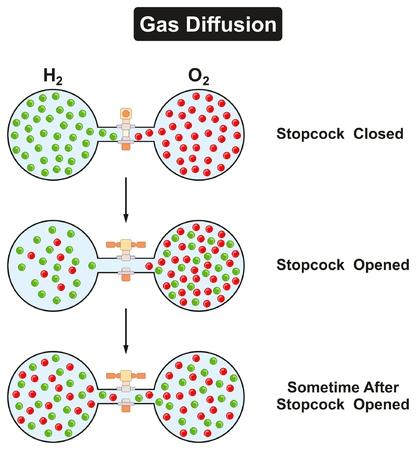 가스 확산 실험실에서 가스 상태의 산소와 수소의 현상을 관찰하고 물리학 교실 수업을 위해 열어 둔 스톱 콕을 닫았다.
