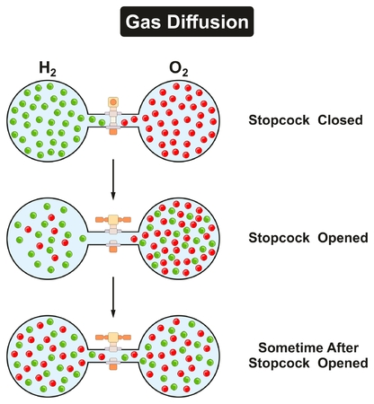 opened: Gas Diffusion Phenomenon of oxygen and hydrogen in gaseous state in experiment container tube with stopcock closed opened and after sometime for physics science education lesson