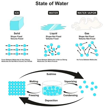 물의 상태 물리적 인 특성과 모양의 양 및 교육을 위해 한 주에서 다른 주로의 분자 전이 사이의 힘을 가진 정보가있는 유동적 인 고체 얼음 액체 및 증기 기체