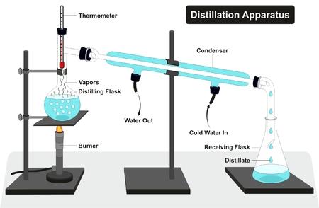Diagramme d'appareil de distillation avec des outils complets de laboratoire et de processus, y compris des thermomètres, des distillateurs et des récipients de réception et des vapeurs d'entrée et de sortie d'eau pour l'enseignement des sciences de la chimie
