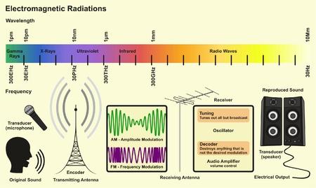 전자기 스펙트럼 소스 감마선 방사선 xray 자외선 적외선 전파의 infographic 다이어그램 통신 과학 교육을위한 파장 주파수 예제 일러스트