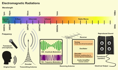 Electromagnetic Spectrum Sources infographic diagram with radiations of gamma ray xray ultraviolet infrared radio waves wavelength frequency examples for communication science education Illustration
