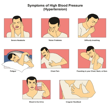 Symptoms of High Blood Pressure hypertension infographic diagram signs risks including fatigue headache vision problem chest pain difficulty breathing irregular heartbeat for medical science education Illustration