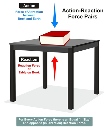table sizes: Action and Reaction Physics Law infographic diagram with example of book on table which shows both forces are equal in size and opposite in direction for science education