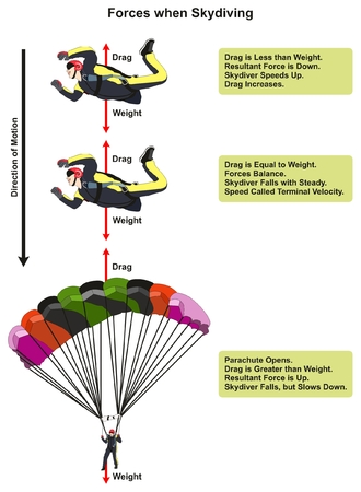 Forces when Skydiving physics lesson diagram including skydiver affected by drag and weight showing the direction of motion for science education Ilustração