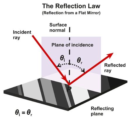 El diagrama infográfico de la Ley de Reflexión con un ejemplo de un espejo plano que muestra la dirección de los rayos incidentes y reflejados y los ángulos con el plano reflector de la superficie normal para la educación en ciencias de la física Ilustración de vector