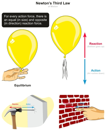Diagrama infográfico de la tercera ley del movimiento de Newton con ejemplos de martillo de globo que golpea clavos y prensa de dedos en la pared para explicar las fuerzas de acción y reacción para la educación en ciencias de la física