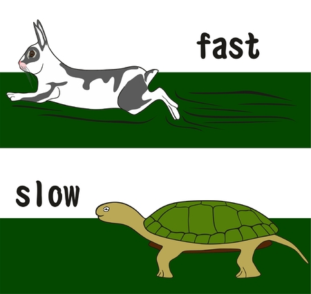 Szybkie i wolne Słowo sprzeciwu Pojęcie koncepcji edukacji pokazano uruchomione królik i chodzenia żółw Ilustracje wektorowe