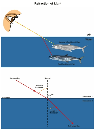 Refraction of Light infographic diagram with an example of human eye looking into fish in water showing incident and refracted rays angles of incidence and refraction for physics science education