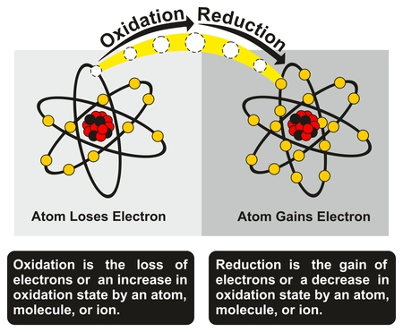 Oxidation and Reduction Process infographic diagram with an example of redox reaction between two atoms one of them get oxidized loses an electron while other get reduced gains an electron Vectores
