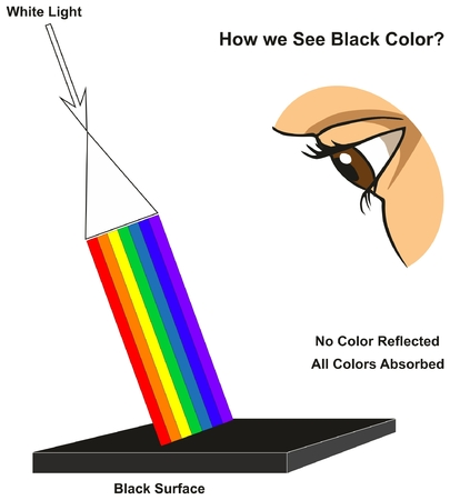 How we See Black Color infographic diagram showing visible spectrum light on surface and colors reflected or absorbed according to its color for physics science education Illustration