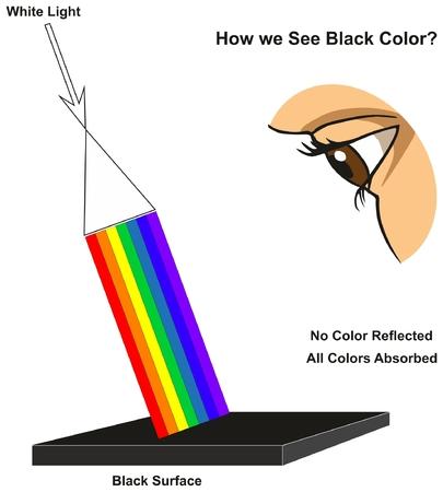 Jak widzimy czarno-kolorowy diagram infograficzny przedstawiający widzialne widmo światła na powierzchni i kolorach odbitych lub pochłoniętych według jego koloru dla nauki fizyki