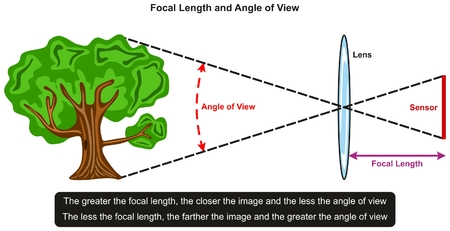Focal Length and Angle of View infographic diagram showing relation between them with an example of tree in front of lens and sensor for photography and physics science education