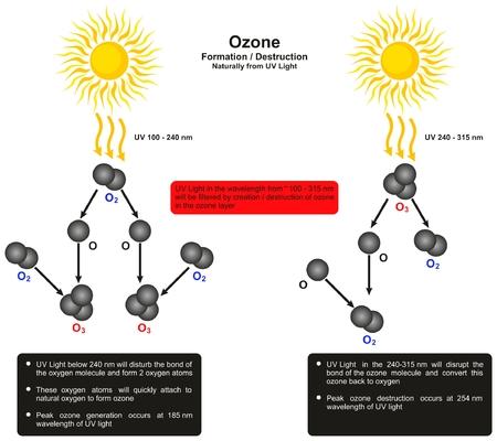 オゾン層破壊インフォ グラフィック ダイアグラムによって自然科学教育のためのオゾン分子波長の作成と破棄を示す紫外光を形成します。