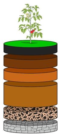 Schéma infographique des couches de sol montrant comme des tranches, y compris l'humus terre arable couche d'éluviation régolithe sous-sol et le substratum rocheux pour l'enseignement des sciences de la géologie Vecteurs