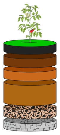 Soil Layers infographic diagram showing as slices including humus topsoil eluviation layer subsoil regolith and bedrock for geology science education
