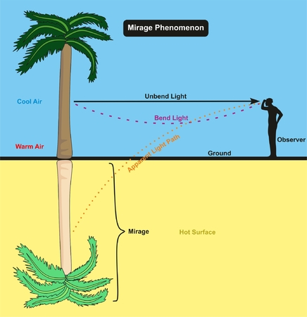 Mirage Phenomenon infographic diagram with an example of an observer man standing on the desert hot surface looking in to palm tree and the reflection appear for physics science education Ilustração