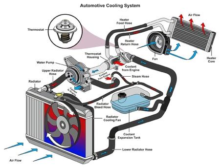 Das infographic Diagramm des Automobilkühlsystems, das Prozess und alle Teile zeigt, schließt Kühlerschläuche Kühlmittelströmungsthermostatlüfterbehälter und -luftstrom für Mechaniker- und Straßenverkehrssicherheitswissenschaftsausbildung ein
