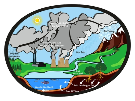 Acid Rain infographic diagram showing formation cycle of this harmful effect to our environment rain with factors that cause it environmental concept for science ecology education