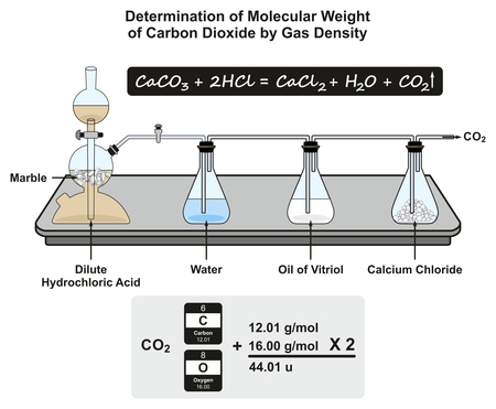Determination of Molecular Weight of Carbon Dioxide by Gas Density infographic diagram showing a laboratory experiment with formula and calculation for chemistry science education Banco de Imagens - 87964899