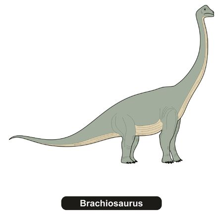 Brachiosaurus Dinosaur Extinct Animal