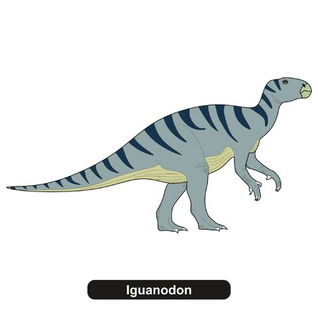 Iguanodon Dinosaur Extinct Animal 일러스트