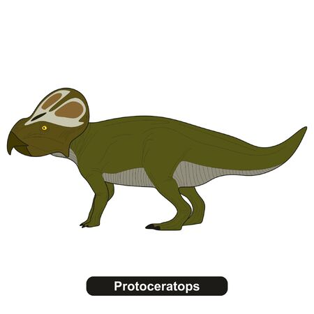 Protoceratops Dinosaur Extinct Animal