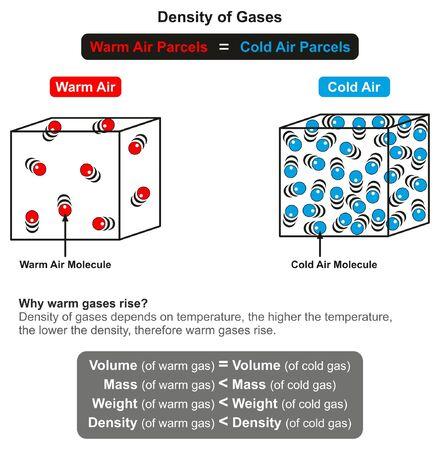 Le diagramme infographique de la densité des gaz et sa relation n avec la température avec un exemple d'air chaud et froid de même volume explique également pourquoi les gaz chauds augmentent pour l'enseignement des sciences physiques
