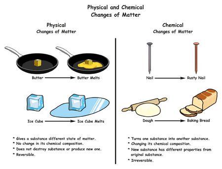 Diagrama infográfico de cambios físicos y químicos de la materia una comparación con ejemplos para cada uno, incluida la mantequilla y el cubo de hielo, derretir clavos oxidados y masa para pan horneado para la educación científica Ilustración de vector