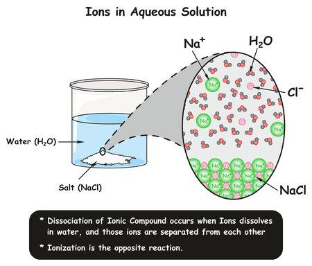Wykres infografiki Jony w roztworze wodnym przedstawiający reakcję dysocjacji kryształów chlorku sodu w wodzie oraz sposób rozdzielania jonów w celu edukacji naukowej z zakresu chemii Ilustracje wektorowe