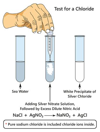 Test for a Chloride infographic diagram showing a laboratory experiment indicates presence of chloride ion when adding silver nitrate solution to sea water for chemistry science education
