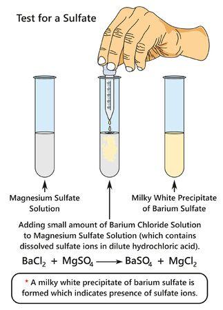La prueba de un diagrama infográfico de sulfato que muestra un experimento de laboratorio indica la presencia de iones de sulfato al agregar una solución de cloruro de bario al sulfato de magnesio para la educación en ciencias químicas