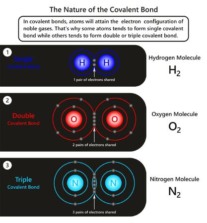 El diagrama infográfico de la naturaleza del enlace covalente que muestra ejemplos de átomos en enlace covalente, cómo algunos de ellos tienden a formar un enlace simple, mientras que otros lo hacen doble o triple para la ciencia química. Ilustración de vector