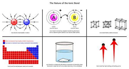 De aard van de ionische binding infographic diagram inclusief elektrostatisch volledige elektronenoverdracht roosterstructuur metalen en niet-metalen geleiding kooksmeltpunten voor scheikundeonderwijs
