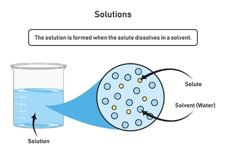 Solution infographic diagram showing container filled by solution which formed when the solute dissolved in a solvent for chemistry science education