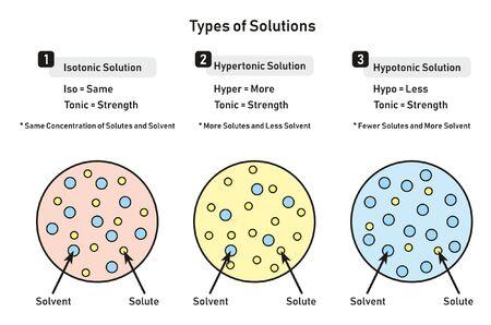 Infografik-Diagramm zu Lösungstypen, einschließlich isotonischer hypertoner Hypotonie und Beziehung zwischen gelöstem Stoff und Lösungsmittel für den Chemieunterricht
