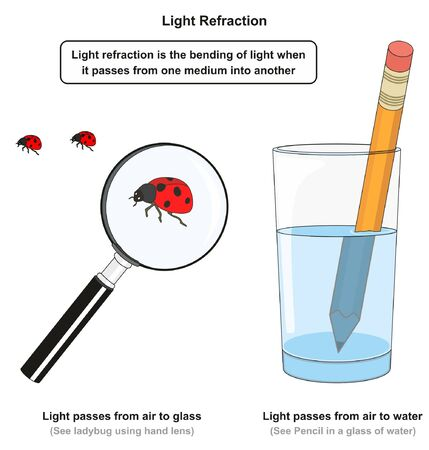 Light Refraction infographic diagram with examples of pencil in a glass of water and using hand lens to see ladybug for physics science education