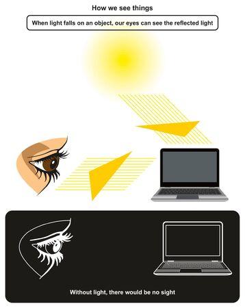 Wie wir die Dinge sehen, Infografik-Diagramm mit dem Beispiel des menschlichen Auges, das einen Laptop sieht, nachdem er Sonnenlicht von seiner Oberfläche für den Physikunterricht reflektiert hat Vektorgrafik