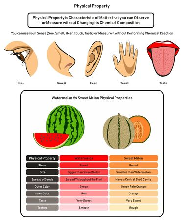 Physical Property infographic diagram showing using human five senses without changing its chemical composition and comparison of watermelon and sweet melon for physics and chemistry science education