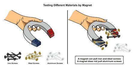 Testowanie różnych materiałów za pomocą diagramu infografiki magnesu pokazującego, jak żelazne i stalowe śruby przyciągają się do magnesu, podczas gdy aluminiowe nie są przeznaczone do nauczania fizyki