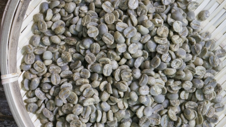 green un-roasted coffee beans photo