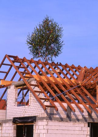 housetop: New House almost finished, little tree on the housetop. Stock Photo