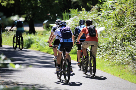 Group of mountain bikers cycling in the forest Standard-Bild