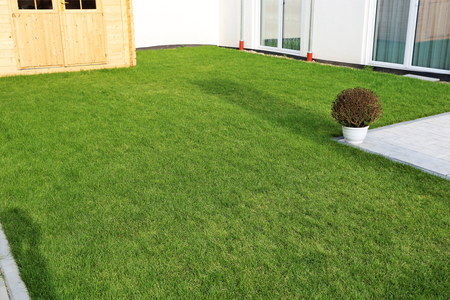 Garden with very neat rolled turf 写真素材