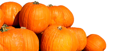 Pumpkins with copy space