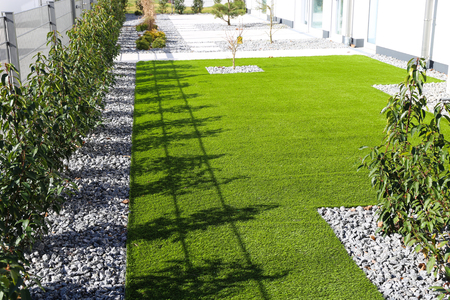 Backyard with very neat rolled turf 写真素材