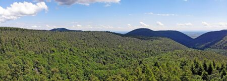 Drone flight above the Palatinate forest
